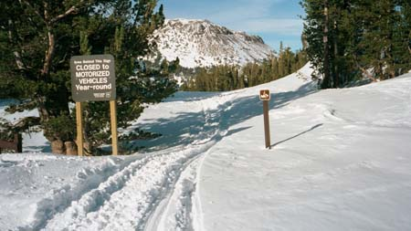 Image of snowmobile trespass